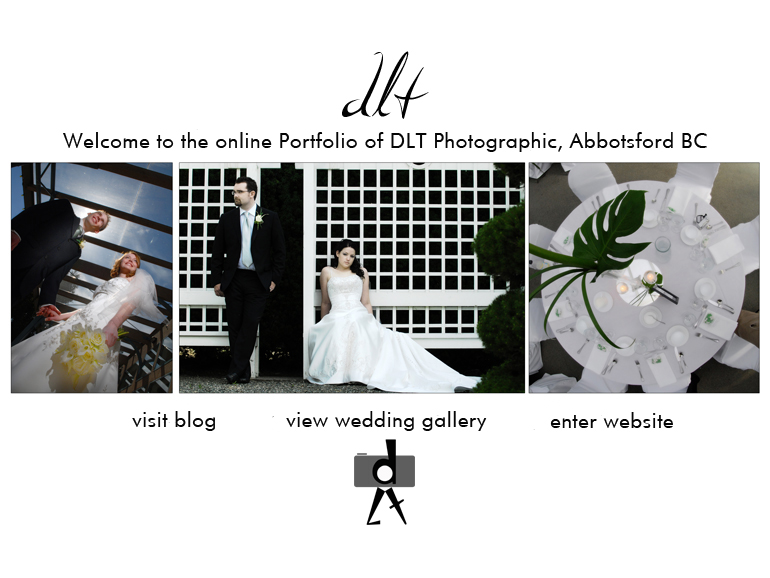 Click To Enter DLT Photographic